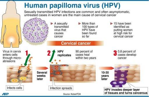 ویروس زگیل تناسلی ویروس پاپیلوم انسانی عکس رابطه جنسی رابطه جنسی درمان ایدز جلوگیری از ایدز پیش گیری ایدز انتقال ایدز