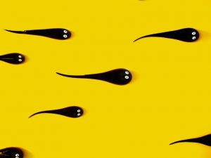 اسپرم زرد